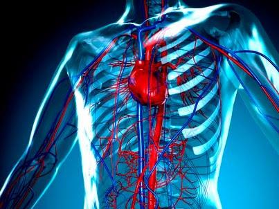 prevenzione per rischio vascolare